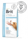 BRIT VETERINARY DIETS Obesity DOG 2kg